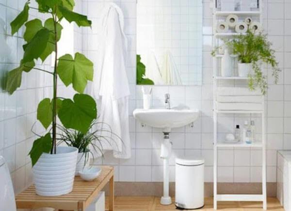 Trang trí phòng tắm nhỏ hẹp với cây xanh